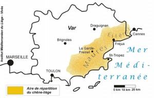 Liège Var